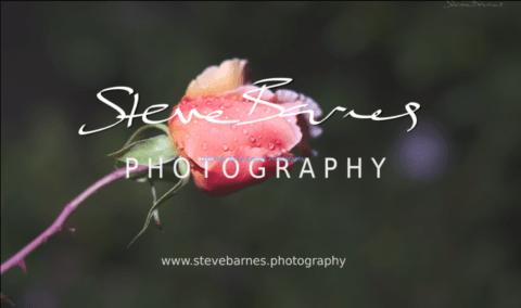 Steve Barnes Photography - January 2019 Fine-Art Slideshow