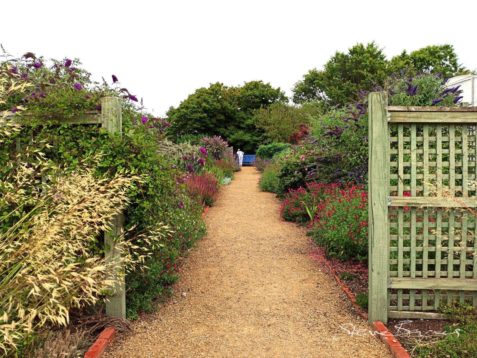 Beautiful Lambley Gardens